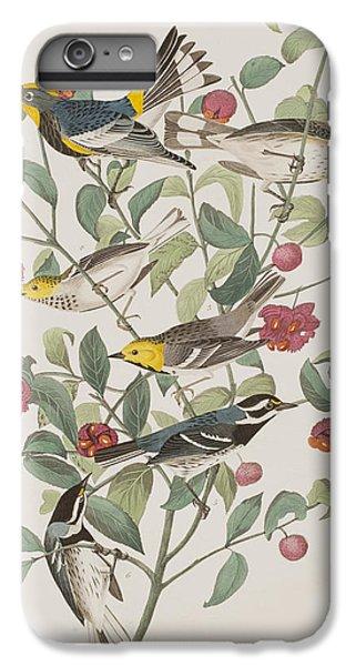 Audubons Warbler Hermit Warbler Black-throated Gray Warbler IPhone 6 Plus Case by John James Audubon