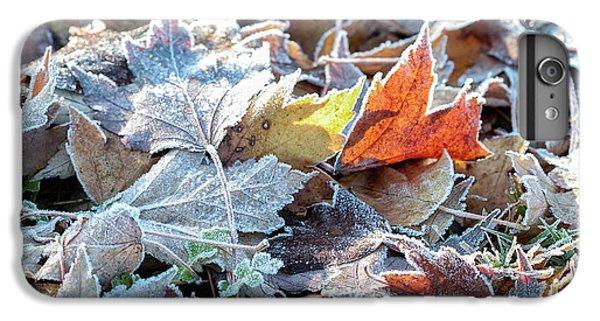 Autumn Ends, Winter Begins 3 IPhone 6 Plus Case