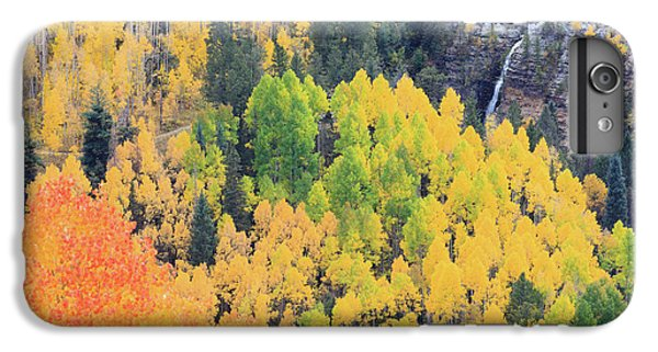 Autumn Glory IPhone 6 Plus Case by David Chandler