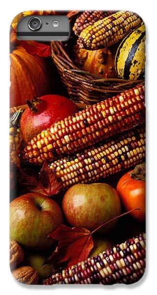 Autumn Harvest  IPhone 6 Plus Case