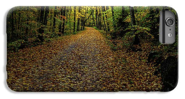 IPhone 6 Plus Case featuring the photograph Autumn Leaves On The Trail by David Patterson