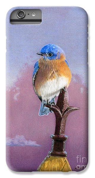 Bluebird iPhone 6 Plus Case - Backyard Bluebird by Sarah Batalka