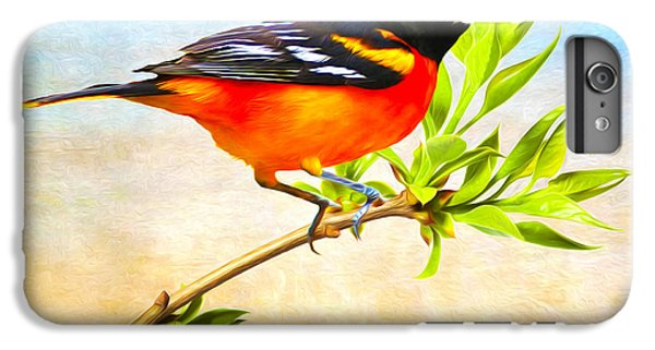 Oriole iPhone 6 Plus Case - Baltimore Oriole Bird by Laura D Young