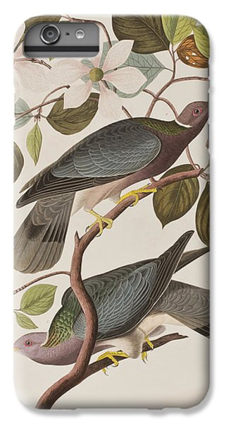 Band-tailed Pigeon  IPhone 6 Plus Case by John James Audubon