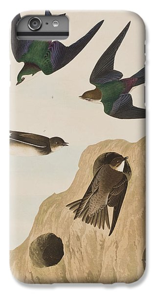 Bank Swallows IPhone 6 Plus Case