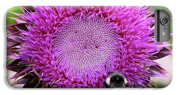 Bee On Thistle IPhone 6 Plus Case