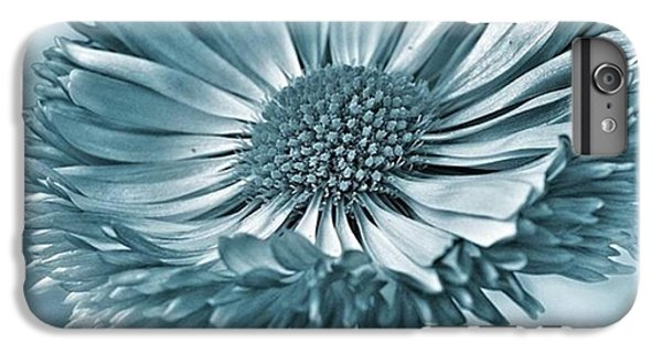 Bellis In Cyan  #flower #flowers IPhone 6 Plus Case