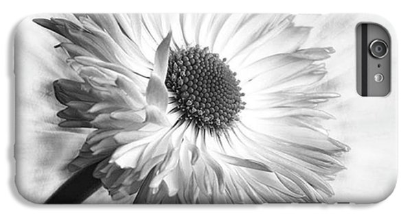 Bellis In Mono  #flower #flowers IPhone 6 Plus Case