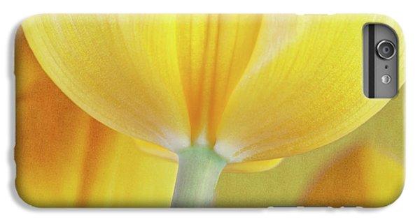 Beneath The Yellow Tulip IPhone 6 Plus Case by Tom Mc Nemar