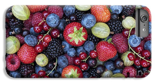 Berried  IPhone 6 Plus Case by Tim Gainey