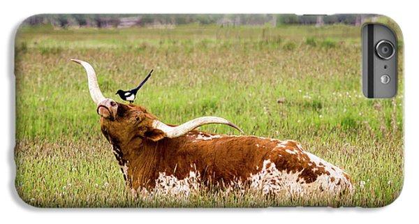 Best Friends - Texas Longhorn Magpie IPhone 6 Plus Case by TL Mair