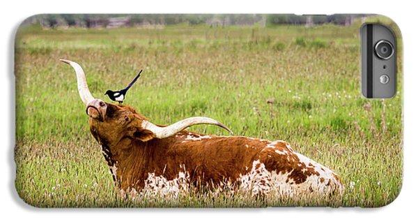 Best Friends - Texas Longhorn Magpie IPhone 6 Plus Case