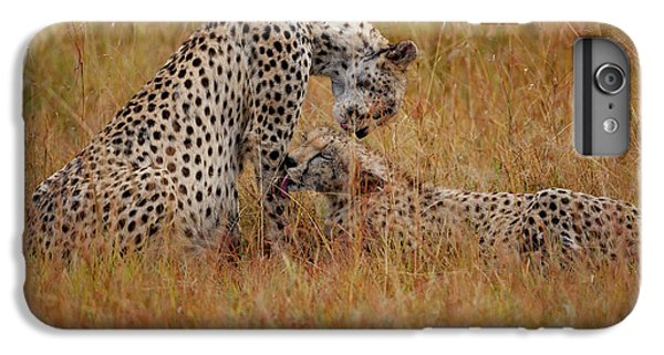 Best Of Friends IPhone 6 Plus Case by Nichola Denny