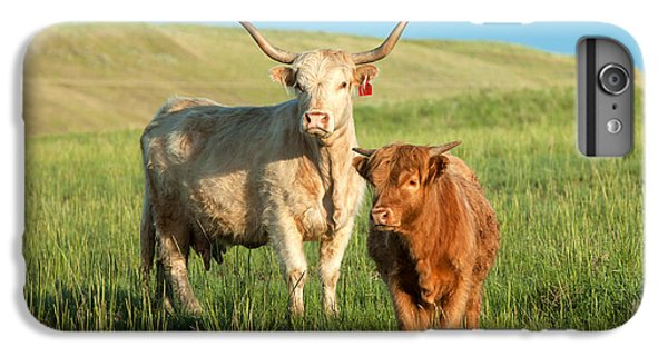 Cow iPhone 6 Plus Case - Big Horn, Little Horn by Todd Klassy