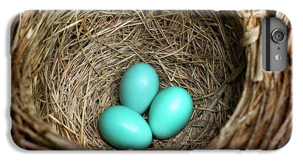 Birds Nest American Robin IPhone 6 Plus Case