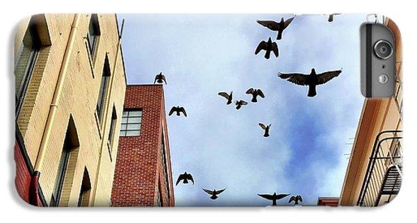 iPhone 6 Plus Case - Birds Overhead by Julie Gebhardt