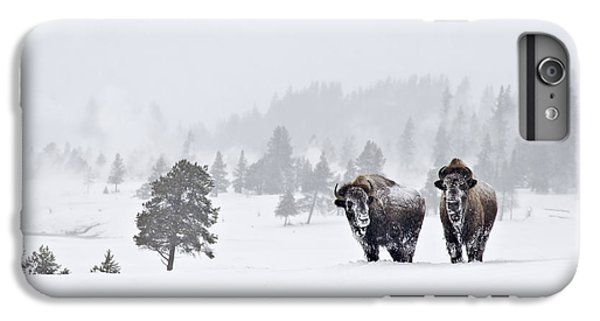 IPhone 6 Plus Case featuring the photograph Bison In The Snow by Gary Lengyel
