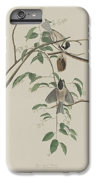 Titmouse iPhone 6 Plus Case - Black-capped Titmouse by Dreyer Wildlife Print Collections