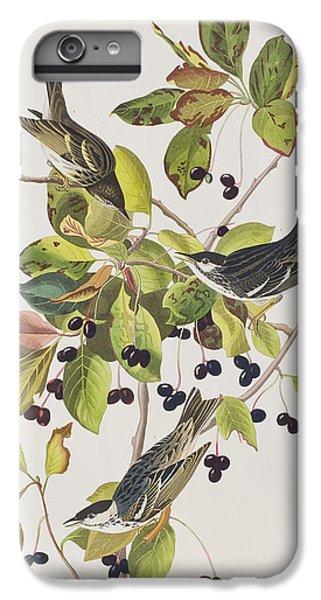 Black Poll Warbler IPhone 6 Plus Case by John James Audubon