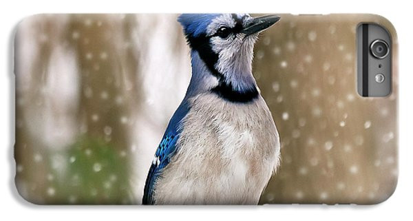 Bluejay iPhone 6 Plus Case - Blue For You by Evelina Kremsdorf