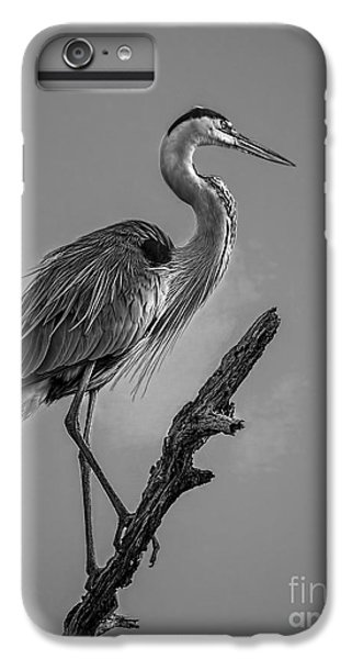 Blue In Black-bw IPhone 6 Plus Case by Marvin Spates