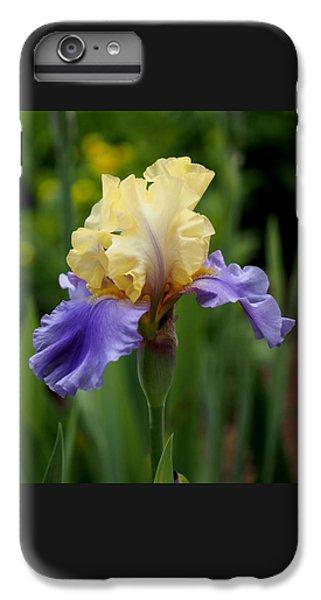 Blue Yellow Iris Germanica IPhone 6 Plus Case
