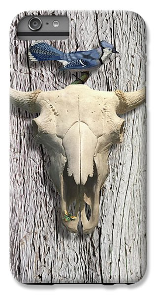 Bluejay iPhone 6 Plus Case - Bluejay And The Buffalo Skull by Gary Grayson