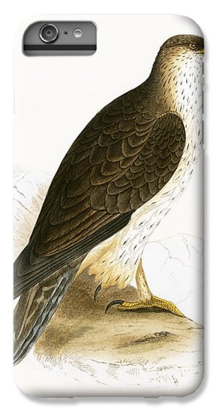 Bonelli's Eagle IPhone 6 Plus Case by English School