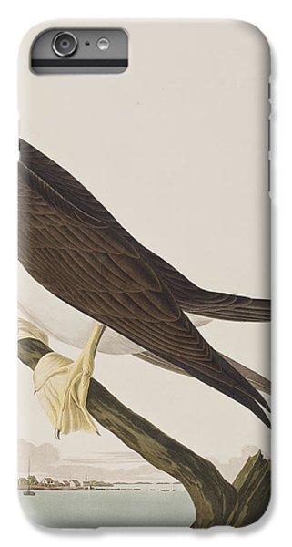 Boobies iPhone 6 Plus Case - Booby Gannet   by John James Audubon