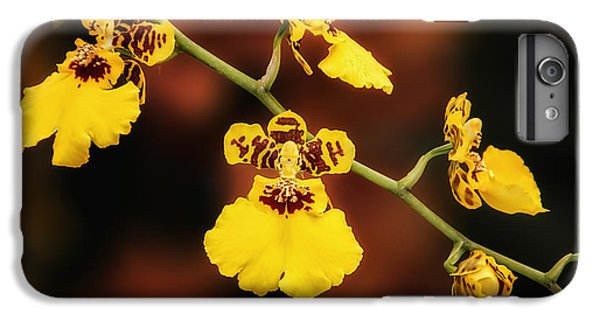 Bright And Beautiful Orchids IPhone 6 Plus Case by Tom Mc Nemar
