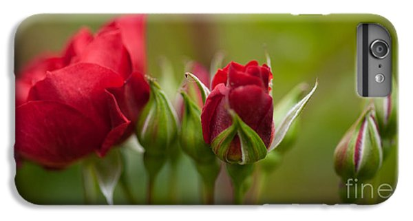 Rose iPhone 6 Plus Case - Bud Bloom Blossom by Mike Reid
