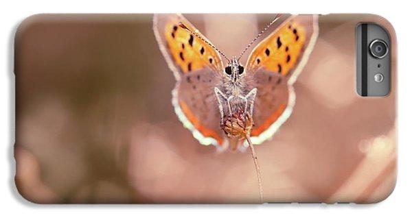 Butterfly Beauty IPhone 6 Plus Case