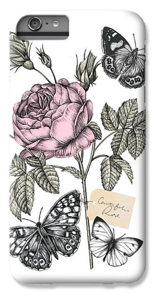 Cabbage Rose IPhone 6 Plus Case by Stephanie Davies
