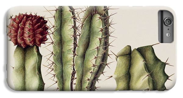 Desert iPhone 6 Plus Case - Cacti by Annabel Barrett