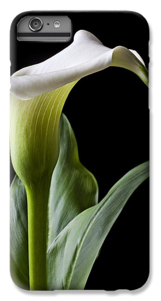 Lily iPhone 6 Plus Case - Calla Lily With Drip by Garry Gay