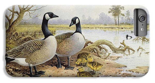 Canada Geese IPhone 6 Plus Case