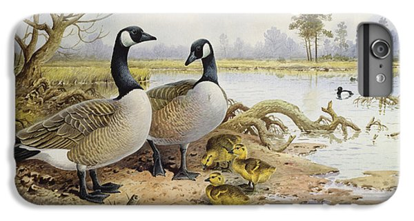 Canada Geese IPhone 6 Plus Case by Carl Donner