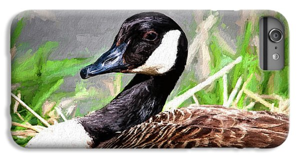 Geese iPhone 6 Plus Case - Canadian Goose by Tom Mc Nemar