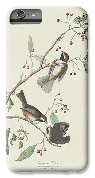 Canadian Titmouse IPhone 6 Plus Case by Rob Dreyer