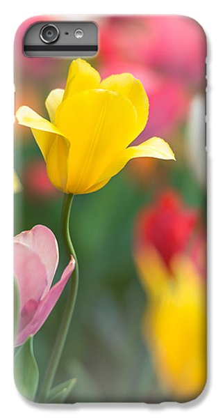 Candy Land IPhone 6 Plus Case by Johan Hakansson