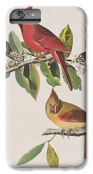 Cardinal Grosbeak IPhone 6 Plus Case by John James Audubon
