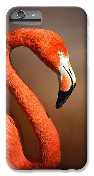 Caribean Flamingo Portrait IPhone 6 Plus Case