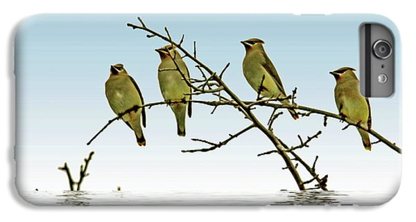 Cedar Waxwings On A Branch IPhone 6 Plus Case by Geraldine Scull