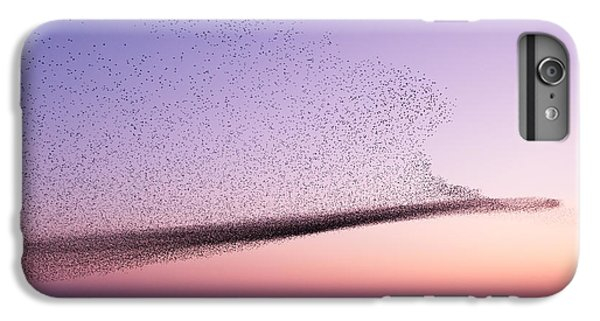 Chaos In Motion - Starling Murmuration IPhone 6 Plus Case by Roeselien Raimond