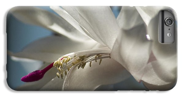 IPhone 6 Plus Case featuring the photograph Christmas Cactus Blossom by Yulia Kazansky