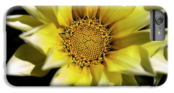 IPhone 6 Plus Case featuring the photograph Chrysanthos by Linda Lees