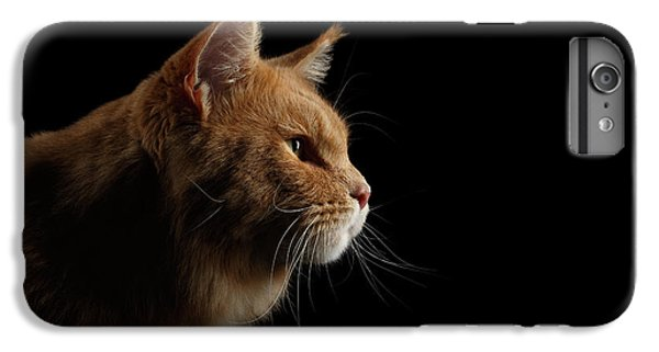 Cat iPhone 6 Plus Case - Close-up Portrait Ginger Maine Coon Cat Isolated On Black Background by Sergey Taran