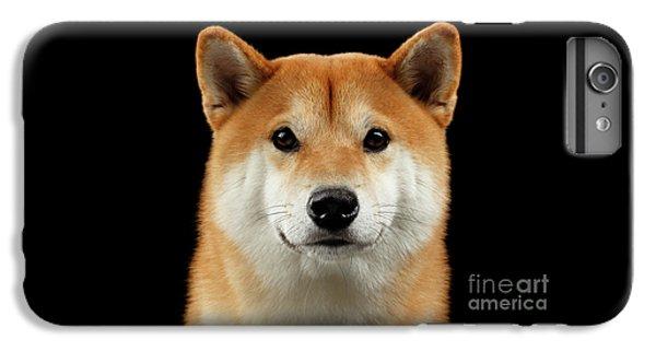 Close-up Portrait Of Head Shiba Inu Dog, Isolated Black Background IPhone 6 Plus Case by Sergey Taran