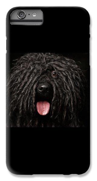 Close Up Portrait Of Puli Dog Isolated On Black IPhone 6 Plus Case by Sergey Taran