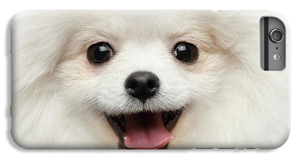 Dog iPhone 6 Plus Case - Closeup Furry Happiness White Pomeranian Spitz Dog Curious Smiling by Sergey Taran